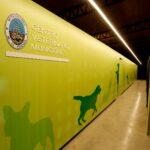 Centro Veterinario Municipal en Ensenada, no mucho mas que decir